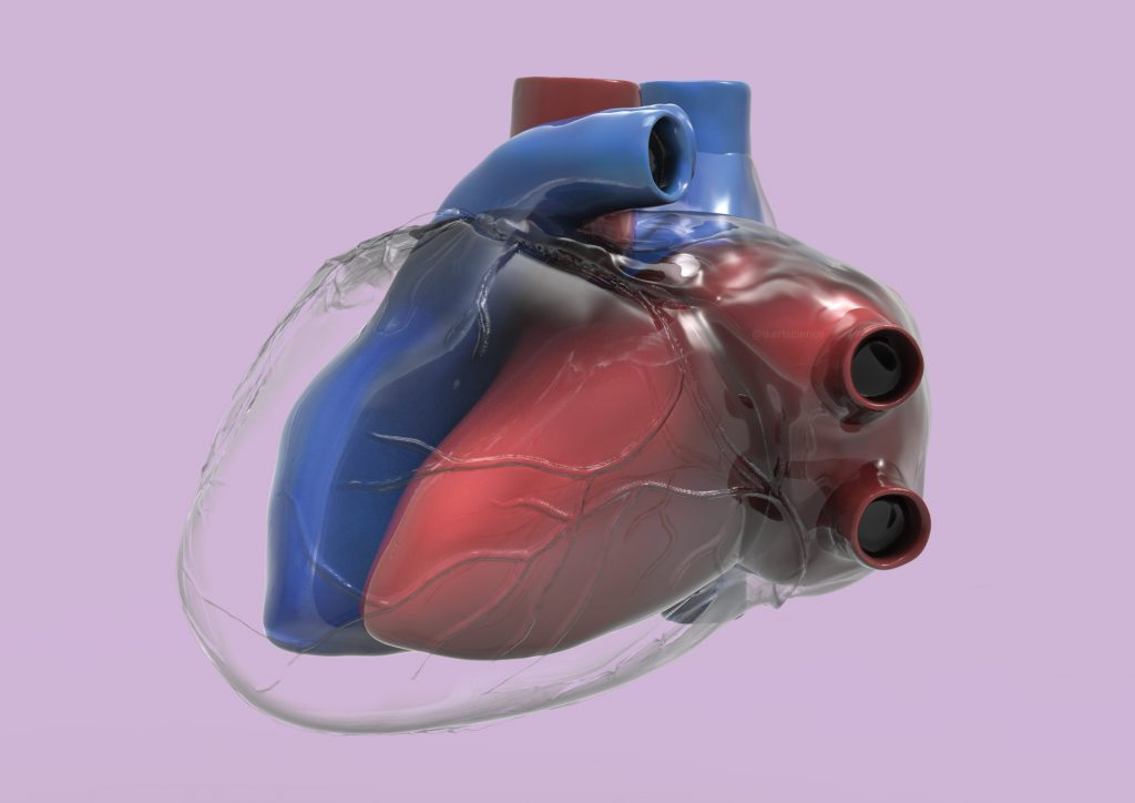 Glass Heart representation (Credit to University of Dundee) by Amie Fernandez