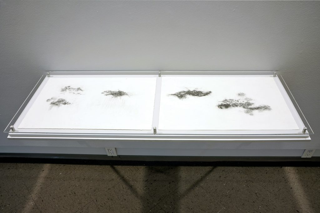 Two of Holly Fay's illustrations of black clouds lying flat on a shelf that lines a wall.