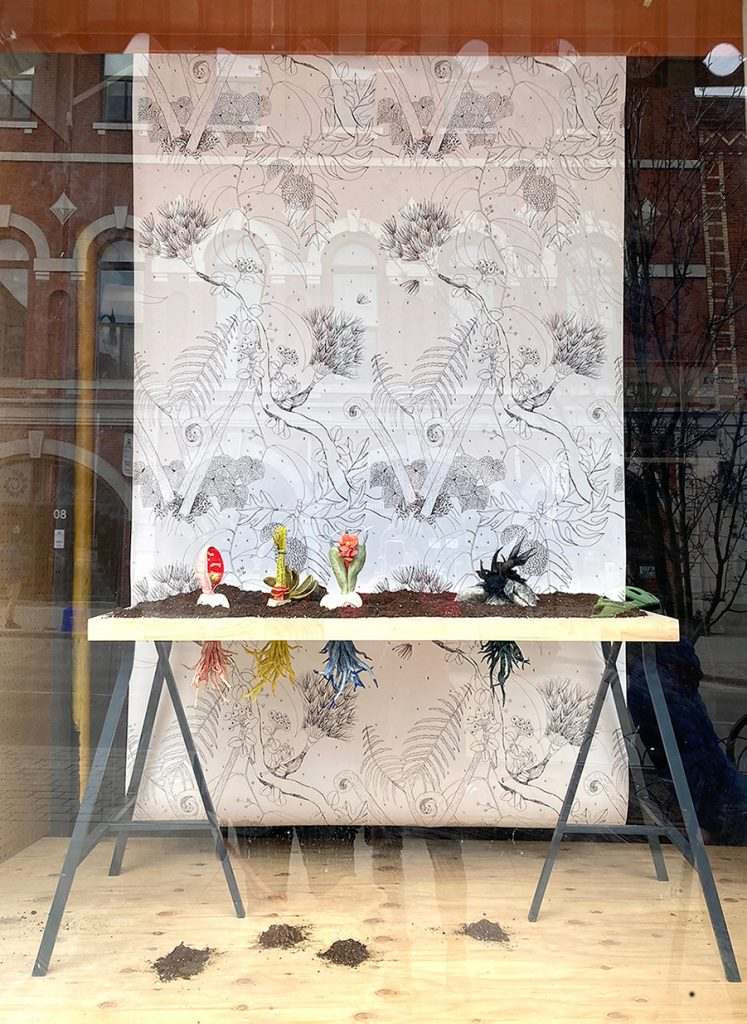 View of the installation through the window. Four colorful sculptures of fictitious plants sit on a wooden table with their equally bright roots below. Behind them is a panel of black and white illustrated plants.