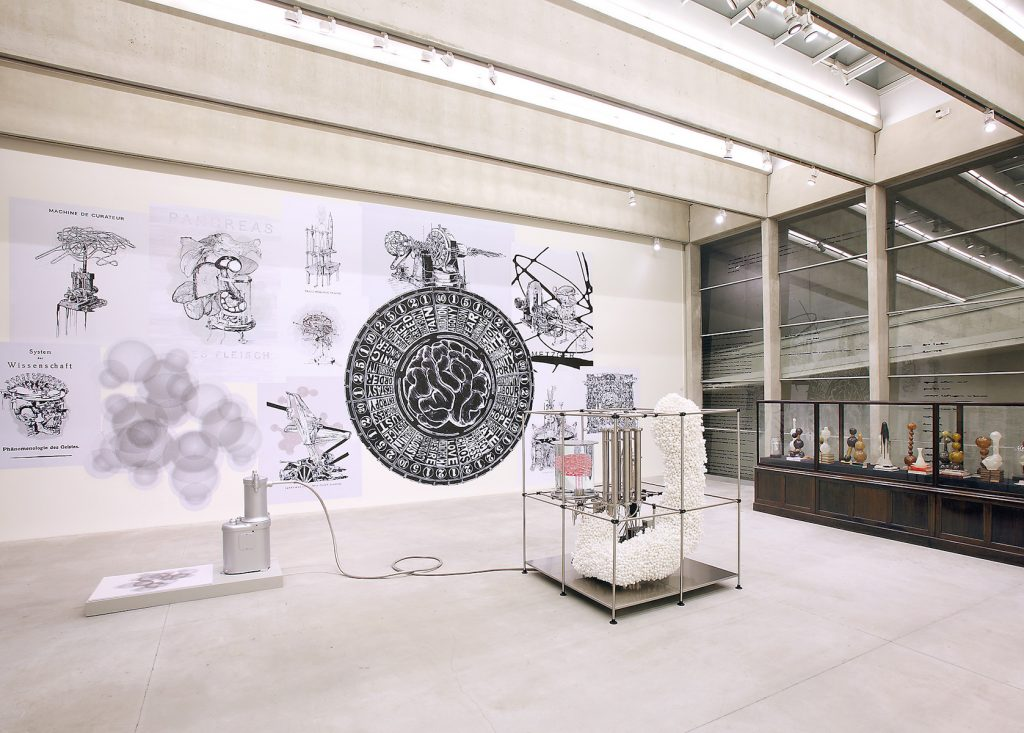 View of a bright room with scientific and medical illustrations on the wall and sculptures in the center of the room.