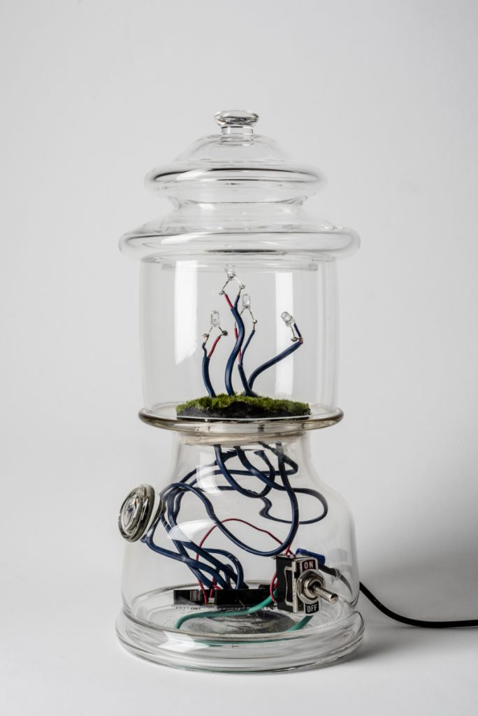 Clear glass lantern-shaped object containing wires, LEDs, and moss