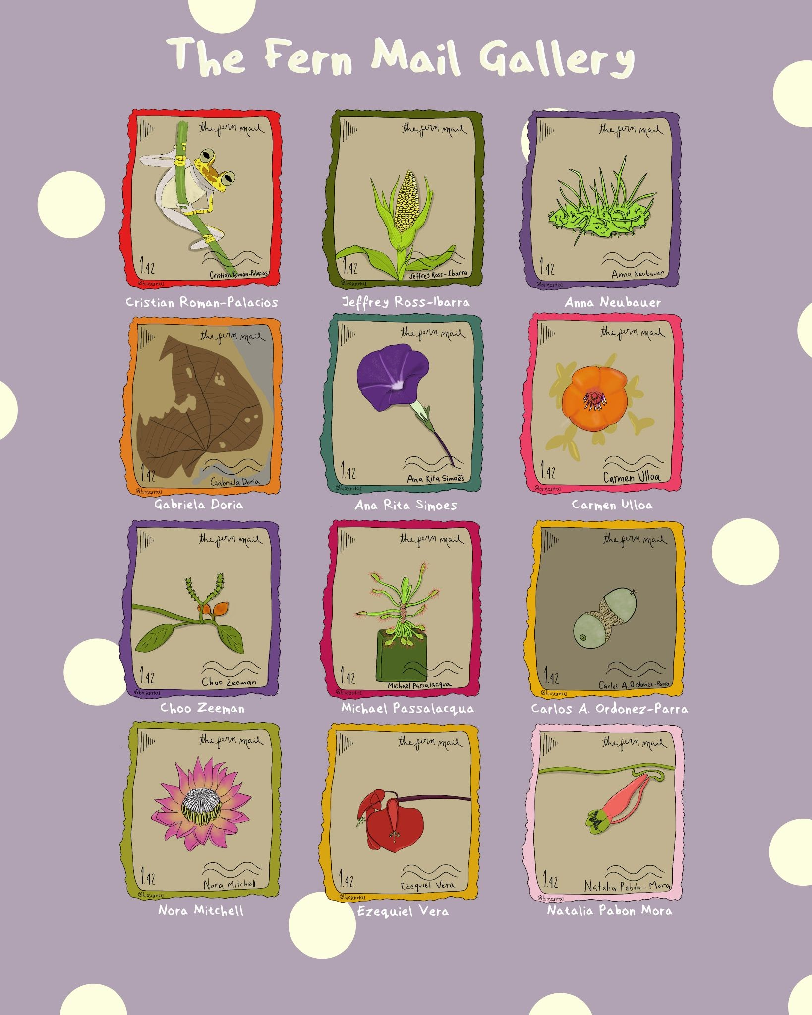 alt text: The Fern Mail Gallery by Sarita Muñoz-Gómez. On a lilac-coloured and sparsely polka-dotted background, twelve illustrated stamps are laid out in a 3 x 4 grid. From top left to bottom right: Boana picturata in a red frame for Cristian Roman-Palacios, Maize in a mossy green frame for Jeffrey Ross-Ibarra, Bryophyte in a purple frame for Anna Neubauer, Menispermites cerrejonensis in an orange frame for Gabriela Doria, Solanaceae in a green frame for Ana Rita Simoes, Meriania aurata in a pink frame for Carmen Ulloa, Gnetum gnemon in a purple frame for Choo Zeeman, Sundew in a hot pink frame for Michael Passalacqua, Quercus humboldtii in a yellow frame for Carlos A. Ordonez-Parra, Protea in a light green frame for Nora Mitchell, Erythrina crista-galli in a mustard yellow frame for Ezequiel Vera, and Tropaeolum in a baby pink frame for Natalia Pabon Mora.